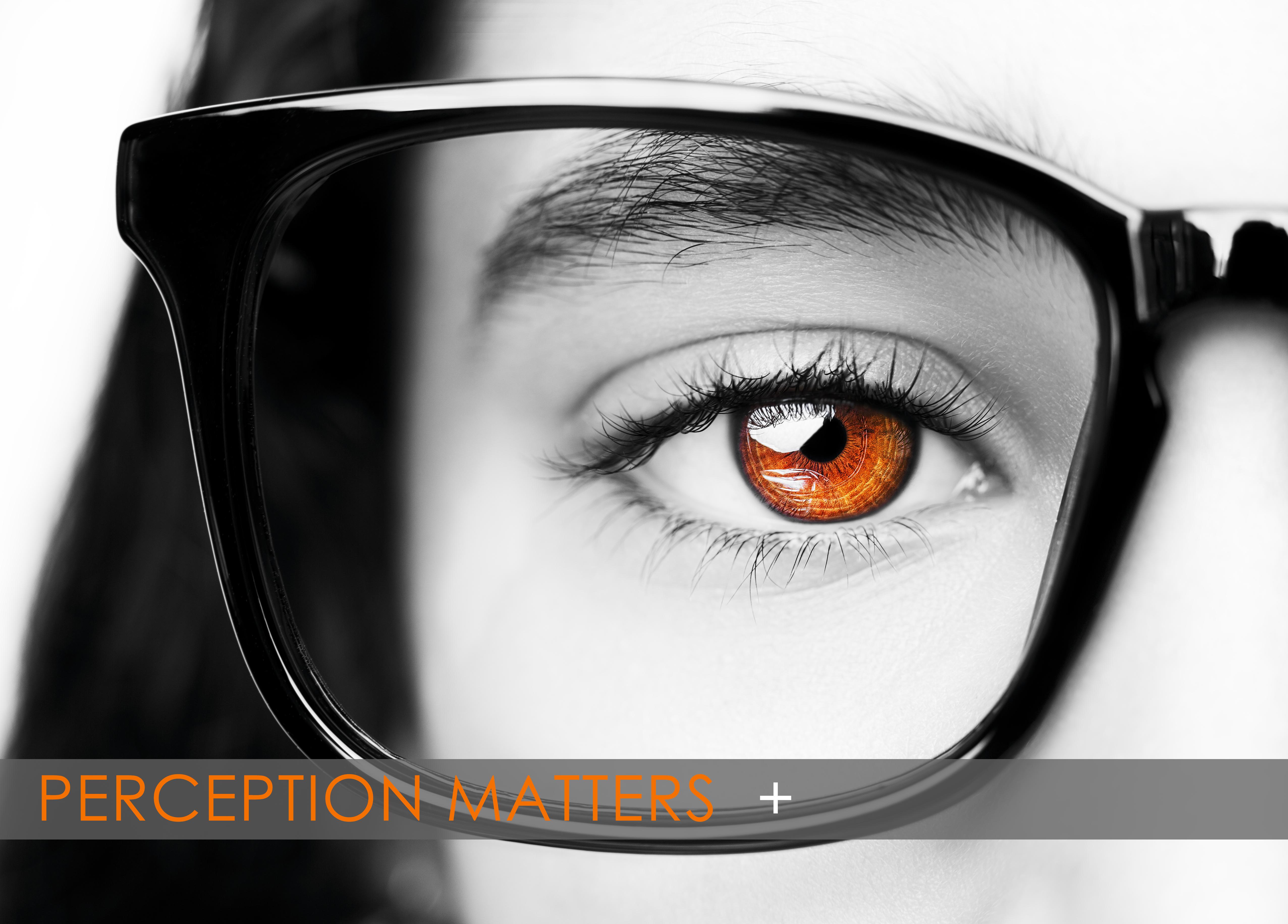 PerceptionMatters