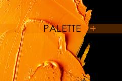 CC Palette2